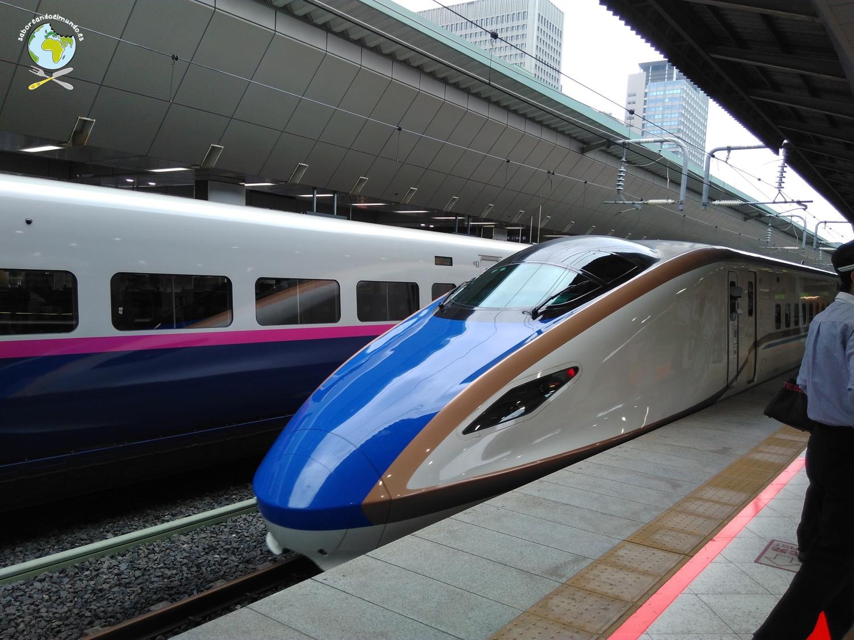 Japon_dia1_hakodate_03